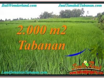 TANAH di TABANAN BALI DIJUAL MURAH Untuk INVESTASI TJTB303