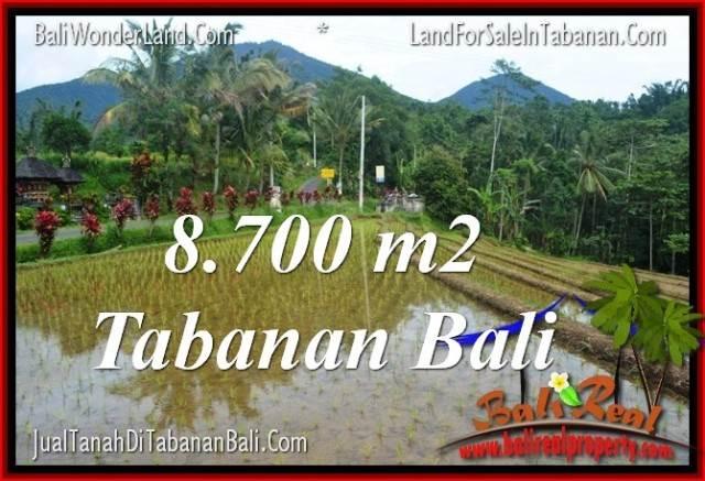JUAL TANAH MURAH di TABANAN BALI 8,700 m2  View gunung dan sawah