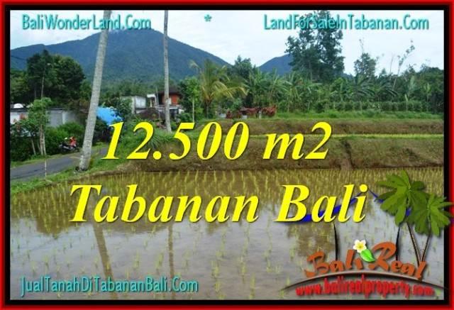 INVESTASI PROPERTI, DIJUAL MURAH TANAH di TABANAN BALI TJTB317