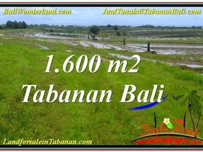 INVESTASI PROPERTI, TANAH di TABANAN BALI DIJUAL TJTB310