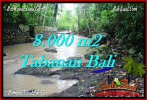 DIJUAL MURAH TANAH di TABANAN BALI 8,000 m2 di Tabanan Selemadeg