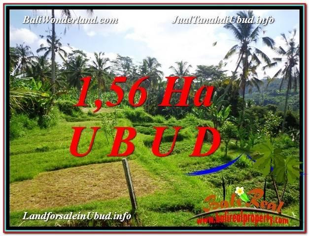 TANAH di UBUD BALI DIJUAL MURAH 15,600 m2 di Ubud Payangan