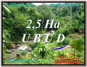 JUAL MURAH TANAH di UBUD BALI 26,000 m2  View Sawah, Sungai dan Tebing