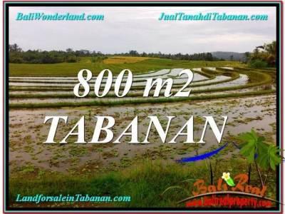 TANAH MURAH di TABANAN 800 m2 di Tabanan Selemadeg