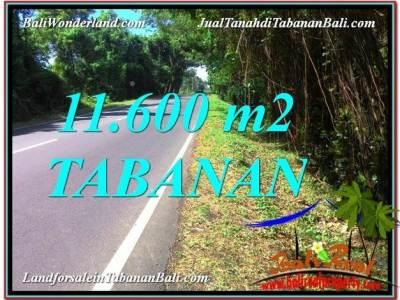 JUAL TANAH di TABANAN BALI Untuk INVESTASI TJTB327