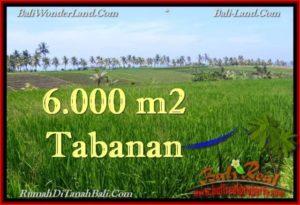INVESTASI PROPERTI, TANAH MURAH DIJUAL di TABANAN BALI TJTB267