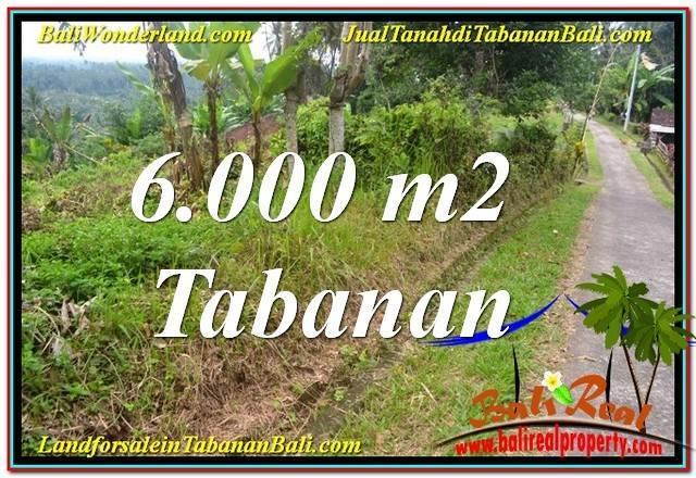 JUAL TANAH di TABANAN 6,000 m2  View Laut dan sawah