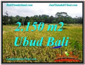TANAH MURAH di UBUD 22 Are View Sawah dan Gunung lingkungan Villa