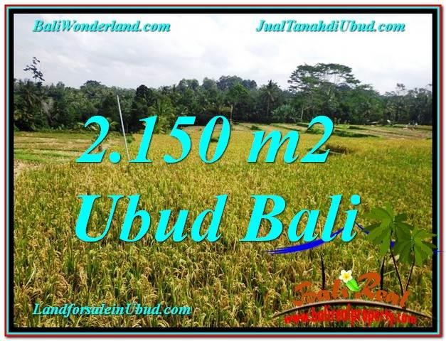 INVESTASI PROPERTI, DIJUAL TANAH MURAH di UBUD BALI TJUB606