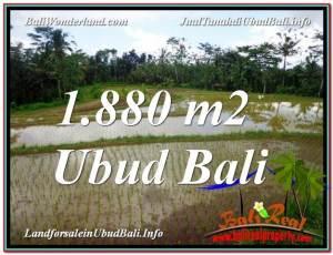 INVESTASI PROPERTI, TANAH MURAH DIJUAL di UBUD BALI TJUB613
