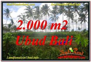 TANAH MURAH DIJUAL di UBUD BALI Untuk INVESTASI TJUB625