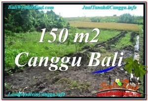 TANAH di CANGGU BALI DIJUAL 150 m2  View sawah
