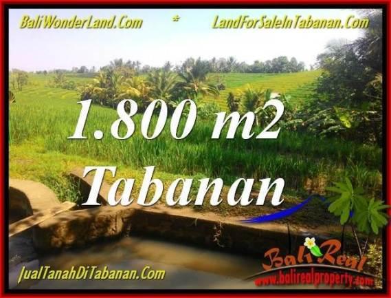TANAH MURAH di TABANAN JUAL 18 Are View sawah