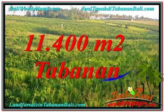 TANAH DIJUAL di TABANAN 114 Are View Laut, Gunung dan sawah