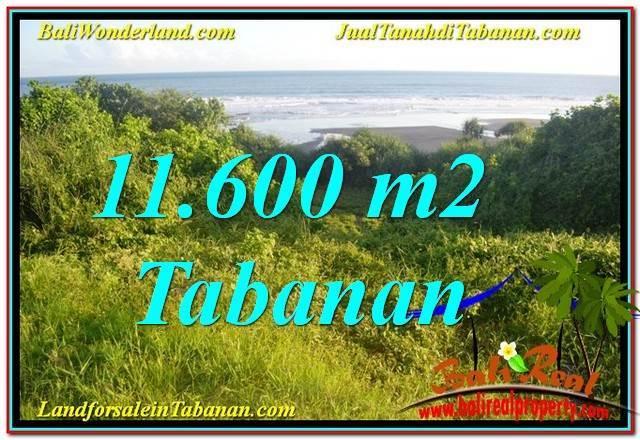 DIJUAL TANAH MURAH di TABANAN BALI Untuk INVESTASI TJTB340