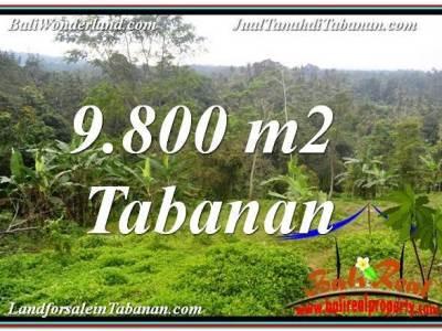 TANAH MURAH di TABANAN JUAL 9,800 m2 View Laut dan sawah