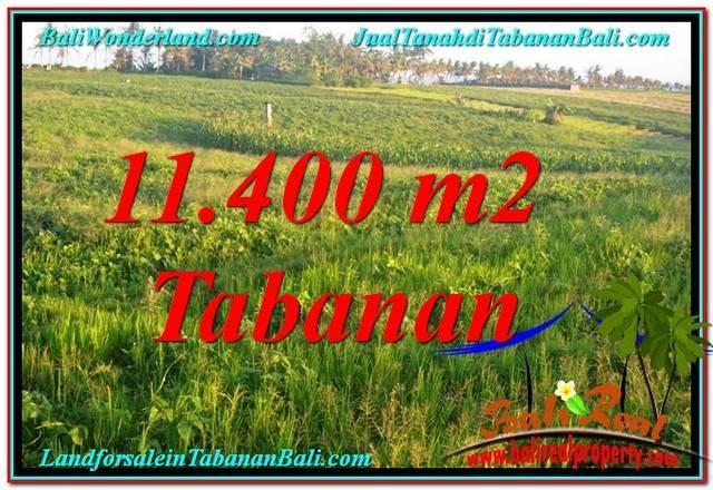 TANAH DIJUAL di TABANAN 11,400 m2  View Laut, Gunung dan sawah