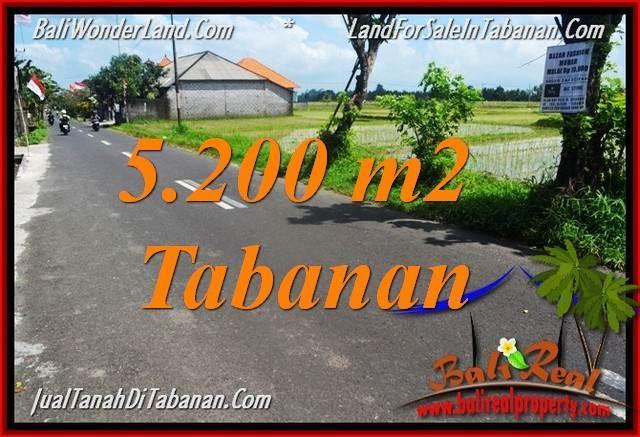 TANAH MURAH DIJUAL di TABANAN 52 Are di Tabanan Kediri