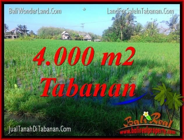 TANAH MURAH di TABANAN BALI DIJUAL 4,000 m2 di Tabanan Selemadeg
