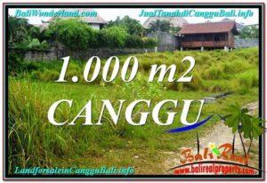 TANAH MURAH di CANGGU 1,000 m2 di Canggu Pererenan