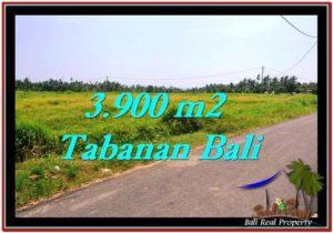 DIJUAL TANAH di TABANAN 3,900 m2 di Tabanan Selemadeg