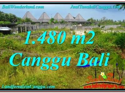 TANAH JUAL MURAH CANGGU BALI 14.8 Are View sawah lingkungan villa