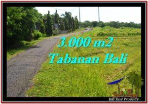 JUAL MURAH TANAH di TABANAN BALI 30 Are View sawah, sungai dan laut
