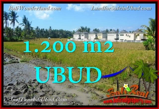 TANAH di UBUD DIJUAL MURAH 1,200 m2  View Sawah link Villa