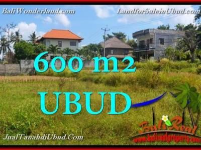 TANAH JUAL MURAH UBUD 6 Are View Sawah link Villa