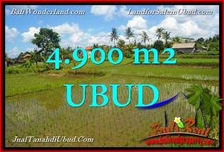 TANAH di UBUD BALI DIJUAL 4,900 m2 di Ubud Pejeng