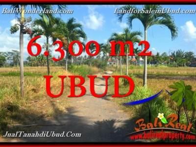 TANAH DIJUAL MURAH di UBUD BALI Untuk INVESTASI TJUB662
