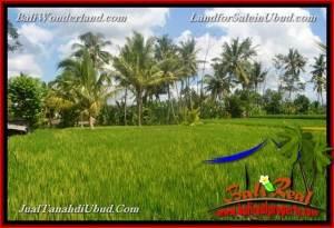 TANAH MURAH JUAL UBUD 1,100 m2 View Sawah link Villa