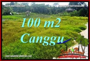 TANAH DIJUAL di CANGGU BALI 100 m2  VIEW SAWAH, LINGKUNGAN VILLA