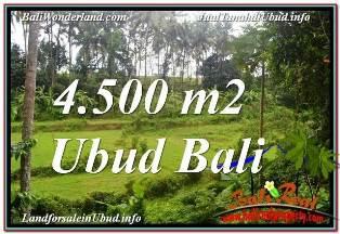JUAL MURAH TANAH di UBUD BALI 4,500 m2 di SENTRAL UBUD