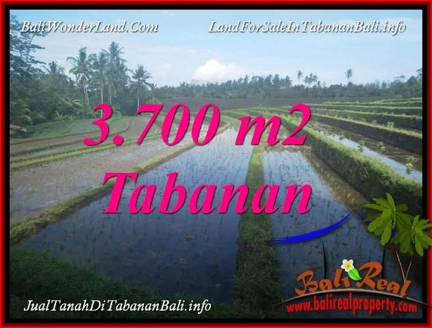 JUAL MURAH TANAH di TABANAN BALI Untuk INVESTASI TJTB388