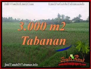 TANAH DIJUAL di TABANAN BALI 30 Are di TABANAN SELEMADEG