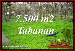 TANAH MURAH di TABANAN BALI DIJUAL 7,500 m2 VIEW KEBUN, LINGKUNGAN VILLA
