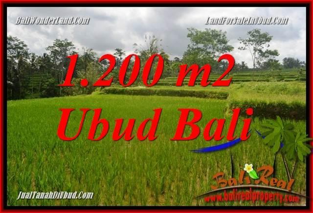 Tanah Murah di Ubud Bali Dijual 1,200 m2 di Ubud Tegalalang