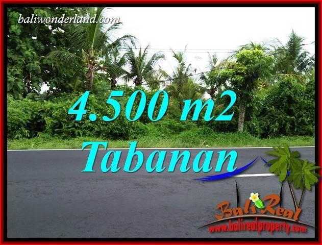 Tanah Murah di Tabanan Bali Dijual Untuk Investasi TJTB395