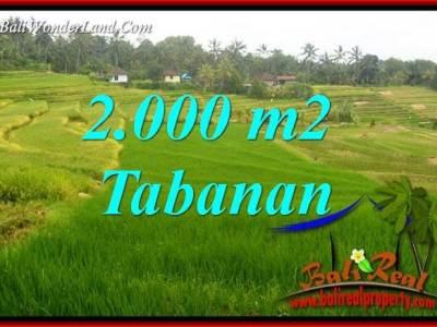 Tanah Murah di Tabanan Dijual 20 Are di Tabanan Selemadeg