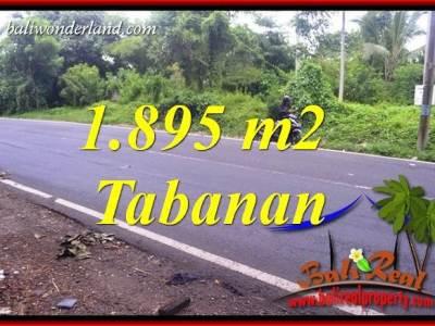 Tanah Murah di Tabanan Dijual TJTB399