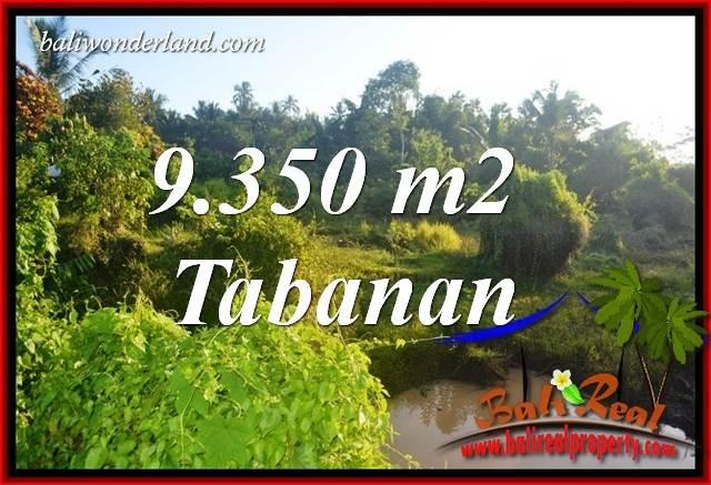 Tanah Murah jual Tabanan 93.5 Are View Kebun dan Sawah