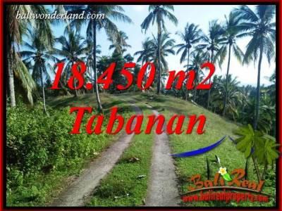 Dijual Murah Tanah di Tabanan Bali 18,450 m2 di Tabanan Selemadeg
