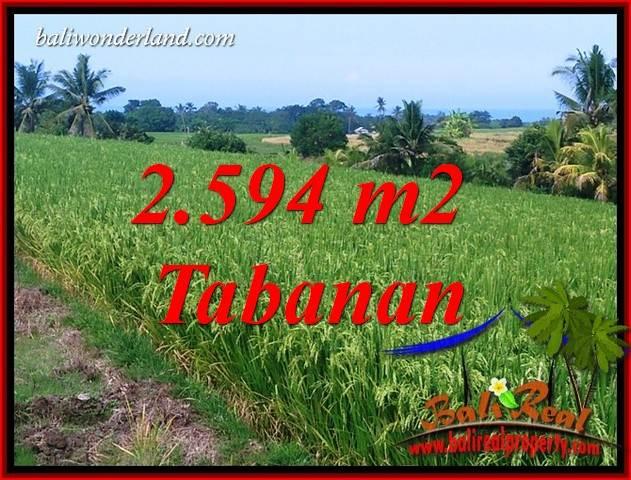 Tanah Murah jual Tabanan 2,594 m2  View Sawah, Gunung dan Sungai Kecil