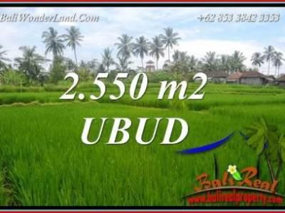 Tanah di Ubud jual Murah 2,550 m2 View sawah dan pangkung lingk. villa