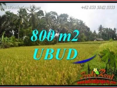 Tanah Murah Dijual di Ubud TJUB707