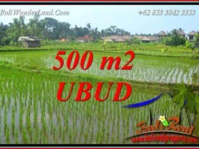 Dijual Murah Tanah di Ubud Bali Untuk Investasi TJUB708