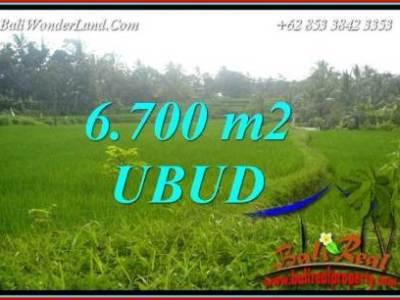 Tanah di Ubud Dijual Murah TJUB731