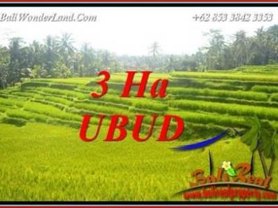 Investasi Properti, Dijual Tanah di Ubud TJUB733