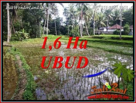 Tanah di Ubud Bali jual Murah 16,000 m2  View sawah dan sungai